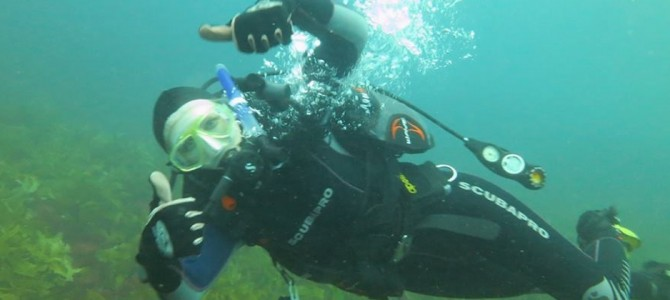 IndiDive – Perth, WA – Why I Love This Dive School