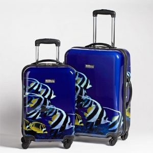National Geographic Explorer Tropical Fish Hardside Luggage - Set of 2