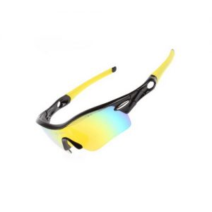 ROCKBROS Bike Polarized Cycling Glasses
